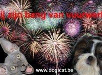 vuurwerk tips bij huisdieren